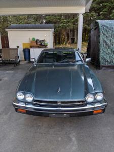 Jaguar XJS HE V12 for sale