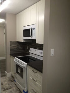 Fully Renovated - 2 Bedroom Condo for rent.   Available July 1st