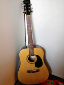 Encore acoustic guitar