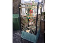 Cage for sale bird cage very nice with accessories