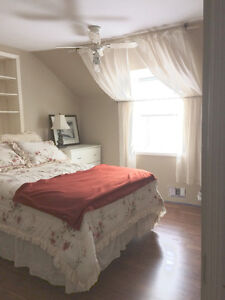 Rooms for rent in country home Ennismore