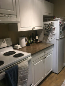 Room for rent in 3-bedroom centrally located apartment - March 1