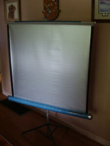 Projector Screen 1950's-1960's