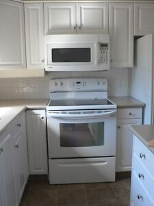 Kenmore Over Stove Microwave with Fan