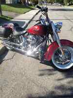 2013 Harley deluxe softail