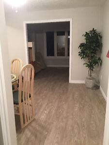 Student rental May 1st 2017 to April 30th. 2018 London Ontario image 2