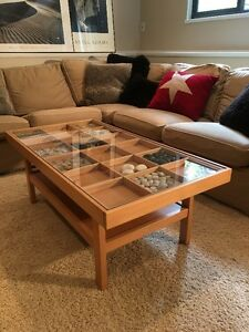 IKEA Coffee Table w/ Glass Top and 18 storage compartments