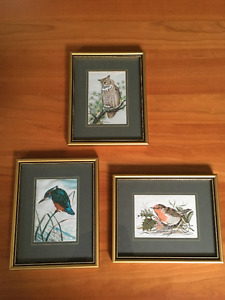 Genuine Woven Bird Pictures Coventry England