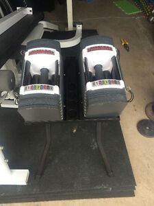 Pair of 50 pound  powerblocks w/wo stand