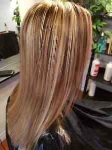 Hair Extentions Highlights & Colours Belleville Belleville Area image 2