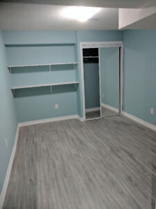 Basement for rent  in Maple