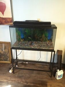 Aquariums....Everything must go!!!!
