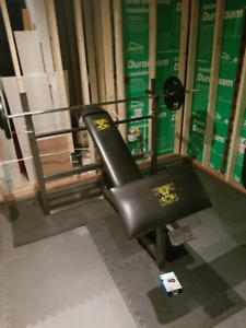 Northern lights weight bench and preacher attachment