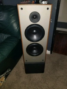 2 towers paradigm speakers