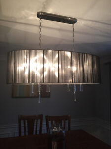 Brand new dining room light fixture