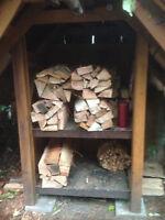 Firewood and Kindling Bundles