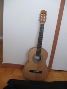 guitare acoustique a vendre saguenay