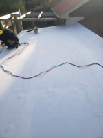 BEST BANG FOR YOUR BUCK ROOFING