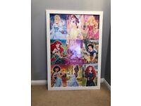Framed Disney Princess Picture
