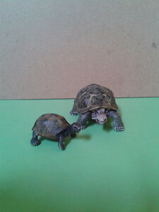 Schleich Toy Collection - Giant Tortoise Family