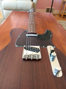 Telecaster Georges Harrisson Rosewood