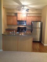 West end condo 2 bed 2 car parking from July 1st