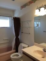 Room for rent on Taylor St E, Brevoort Park South