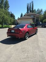 2003 Ford Mustang GT - Low KM!