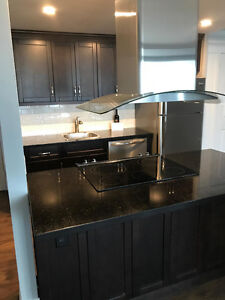 2 Bed/2 Bath Updated Condo 2.5km to Queens & .9km to SLC