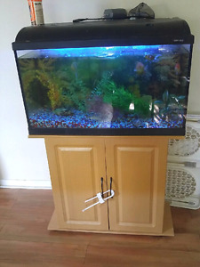 Fish tank and stand and a bunch of accessories