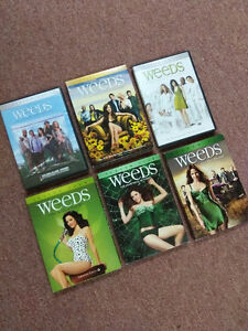 "Seasons 1 to 6 of ""Weeds"" on DVD"