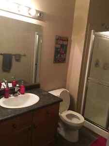Female seeking roomate in Clareview area