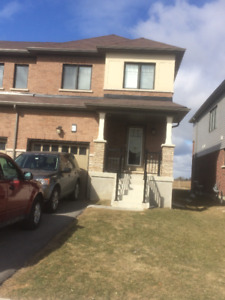 Single Family Home for Rent - Stoney Creek, Hamilton $1,700.00