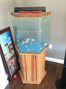 Hexagon fish tank stand adopt or rehome pets in ontario for Hexagon fish tank lid