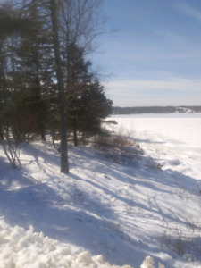 Small ocean front lot on Jeddore Harbour