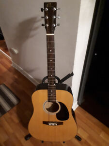 Eleca 6-String Acoustic Guitar with Soft Case