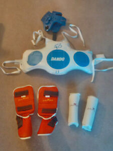 Tae Kwon Do sparing pads (Adult)