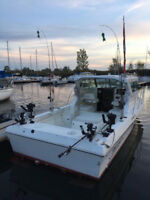 Half Day Private Salmon Fishing Charter **DEAL**