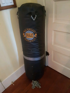 75 lb heavy bag with hardware - $45 obo