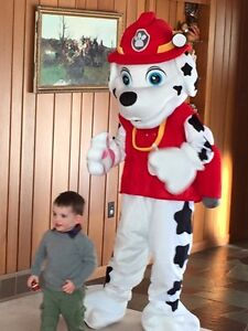 Mascot Birthdays, face Painting, Kids Dance Parties & MORE !
