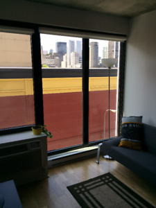 New Studio Condo in Griffintown - Available Oct 1 - Jan 1