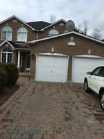 All Inclusive basement floor Near Ellesmere and Meadowvale