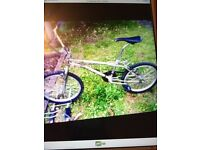 I HAVE TWO BMX BIKES FOR SALE £100 EACH MUST GO NOW NED SPACS