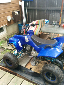 125cc 4 wheeler automatic  best bike on this site for the money