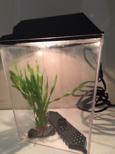 SMALL  FISH TANKS FOR SALE_VERY CLEAN EXCELLENT CONDITION