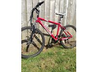 Muddyfox Impel mountain bike 26 inch men's