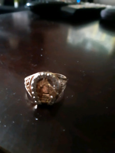 Men's ring 10k 14 diamonds with a horse head on it