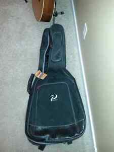 Padded Guitar Bag.