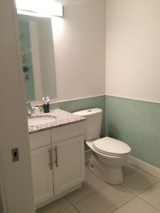All Inclusive Fully Furnished Unit At The RED Condos Kitchener / Waterloo Kitchener Area image 5