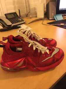 Lebron James 13s Low and High - Youth Size 3.5